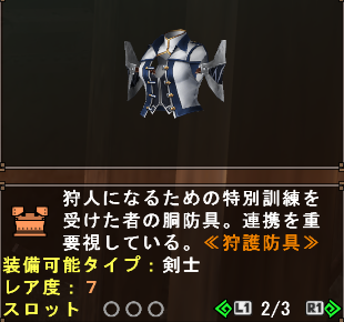 HS Armor (Coach HS Vest)
