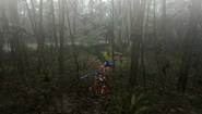 MHFU-Old Jungle Screenshot 024
