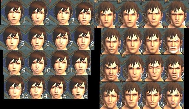 File:Mh4 faces.jpg