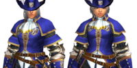 Blue Guild Guard Armor 1
