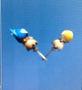File:Cha-cha and kanyanba dual sword.JPG