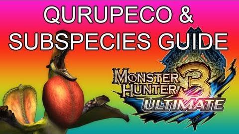 Monster Hunter 3 Ultimate - G1★ Qurupeco & Crimson guide クルペッコ亜種-1