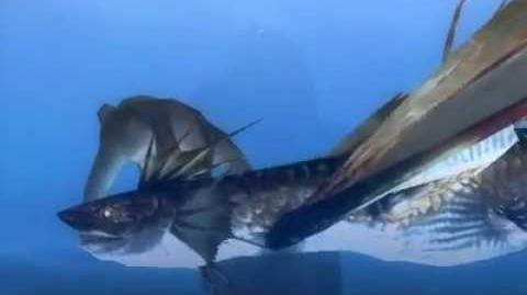Monster Hunter 3 (Tri) G - Wyvern of Water (Plesioth intro)