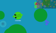 Crocodileatwater