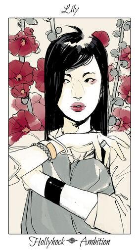 CJ Flowers, Lily