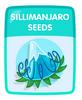 Sillimanjaro Seeds
