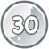 Level 30 icon