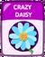 Crazy Daisy old