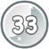 Level 33 icon
