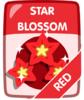 Red Star Blossom