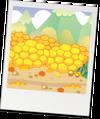 Habitat gingersnap