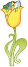 Trashy Tulip grown