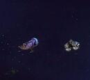 Hyper-warp escape ships