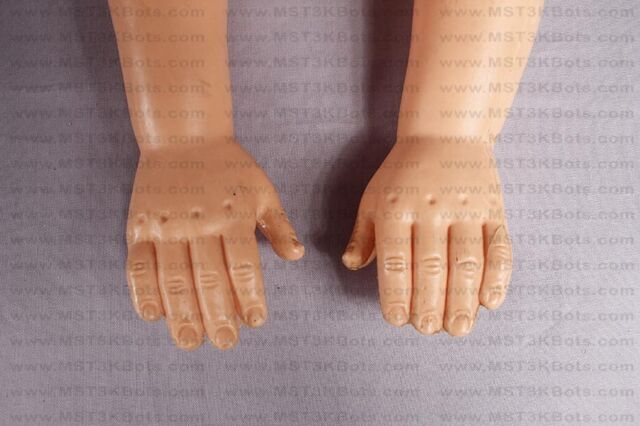 File:ServoDollHands2.jpg