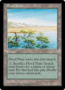 Flood Plain MI