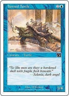 File:Horned turtle 6E.jpg