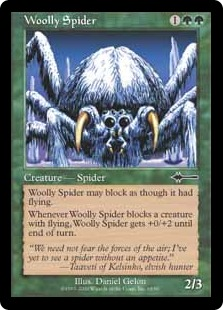 Woolly spider ME2