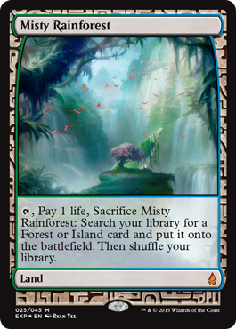 File:Misty Rainforest EXP.png
