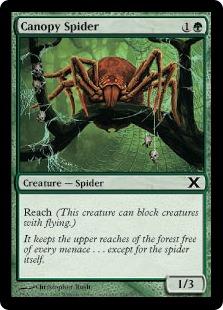 Canopy spider 10E