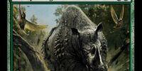 Stampeding Rhino