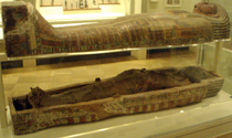 Antjau-Mummy-ROM