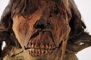 Face-teeth-615