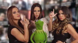 Kermit on Yahoo Celebridades March 14 2014