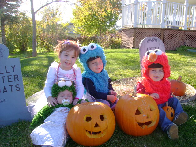 File:Oscar, Zoe, Cookie Mons, and Elmo.JPG