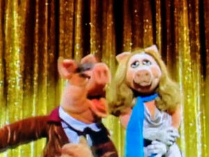 Piggy Tonight Show