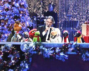 Jingle bells boc