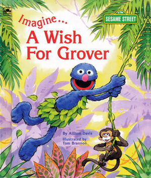 Imagineawishforgrover