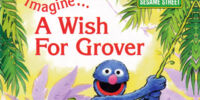 Imagine... A Wish for Grover