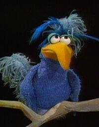 Ohboy Bird