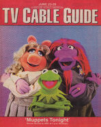 Syracuse Herald TV Guide June 23-29 1996
