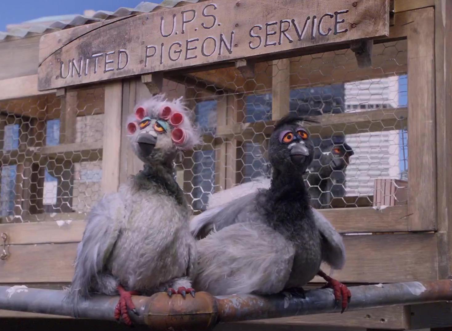 File:Letters-pigeons.jpg