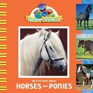 SesameSubjects.HorsesandPonies