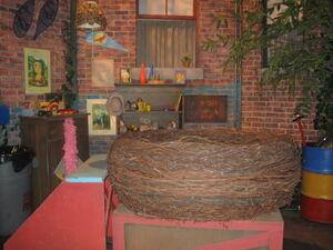 Big Birds Nest