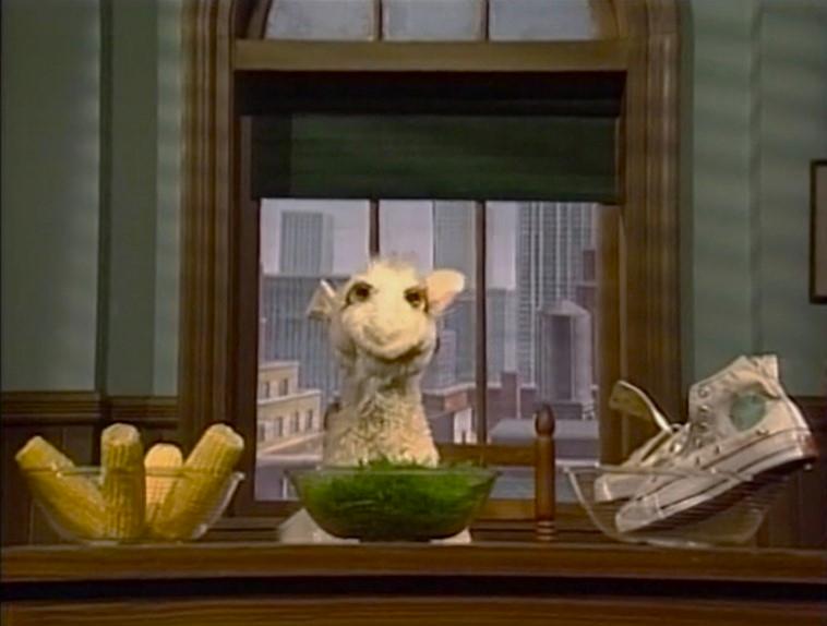 Ms A M Goat Muppet Wiki Fandom Powered By Wikia
