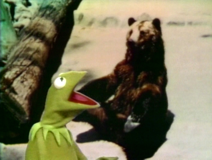 File:Kermit'sBearExc.jpg