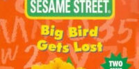Big Bird Gets Lost (video)