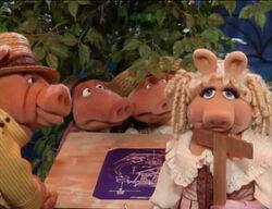 3 little pigs plus papa