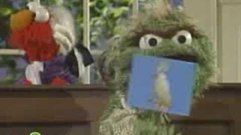 Sesame Street The National Bird
