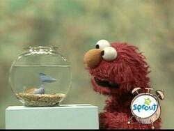 ElmoDorothy.Song