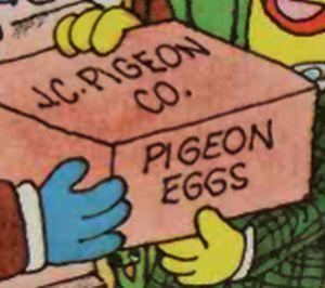Jcpigeon