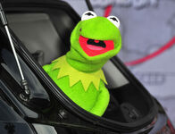 Muppets+Most+Wanted+Premiere (15)
