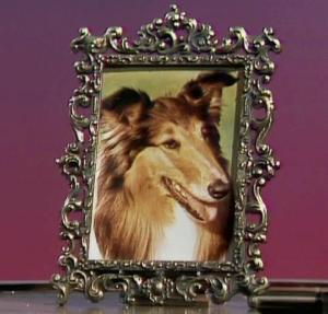 File:Lassie.jpg