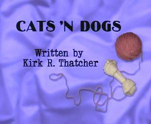File:Cats'ndogs.jpg