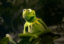 When did Kermit become a frog?