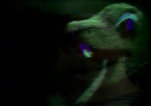 File:Rover joe swamp.JPG