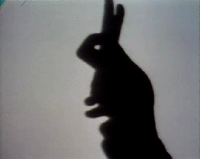 File:Shadowrabbit.jpg